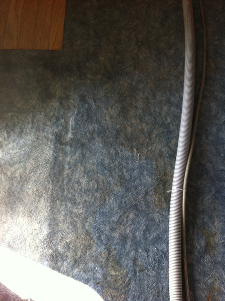 Boat cleaning carpet cleaning oakland 510 210 0930 for Oakland flooring
