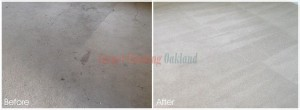 Oakland_CA_CARPET_CLEANING_011
