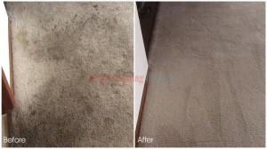 Oakland_CA_CARPET_CLEANING_013