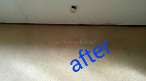 Oakland_CA_CARPET_CLEANING_021