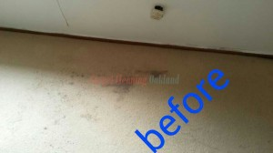 Oakland_CA_CARPET_CLEANING_022