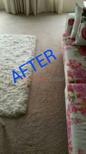 Oakland_CA_CARPET_CLEANING_023
